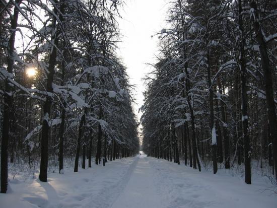 Murom-p.Verbovskiy-17